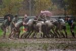 20141130 ARN - Ivrea Rugby 071